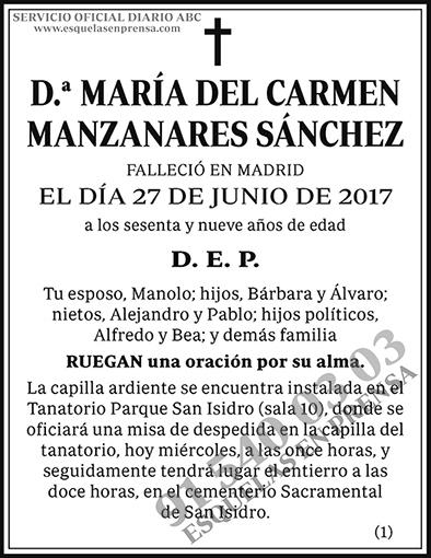 María del Carmen Manzanares Sánchez